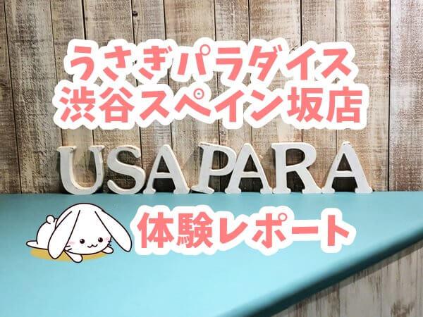うさぎカフェ「うさぎパラダイス渋谷スペイン坂店」体験レポート