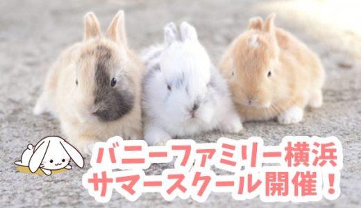 うさぎ専門店「バニーファミリー横浜 」サマースクール開催!