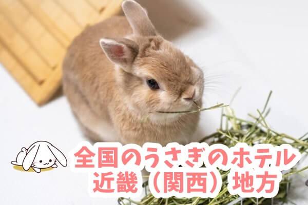 全国のうさぎのホテル・ペットホテル 近畿(関西)地方
