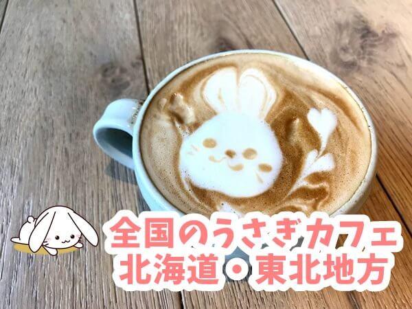 全国のうさぎカフェ 北海道・東北地方