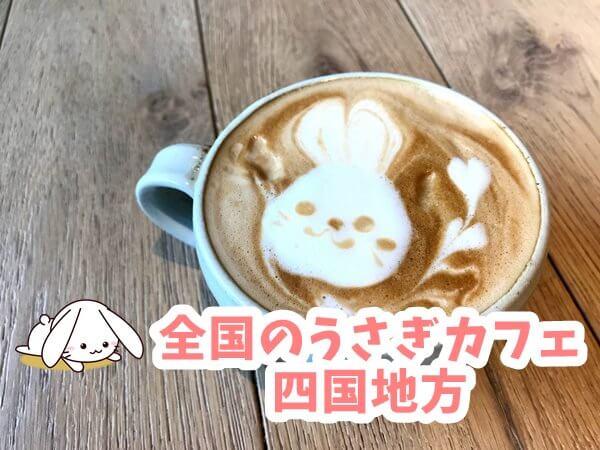 全国のうさぎカフェ 四国地方