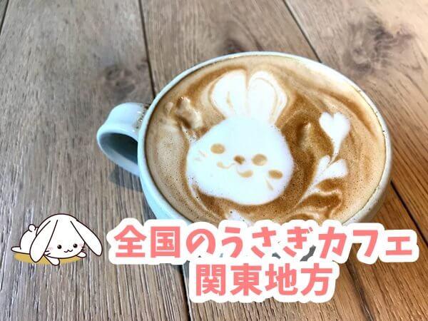 全国のうさぎカフェ 関東地方