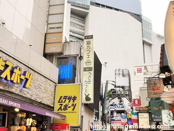 うさぎパラダイス渋谷スペイン坂店