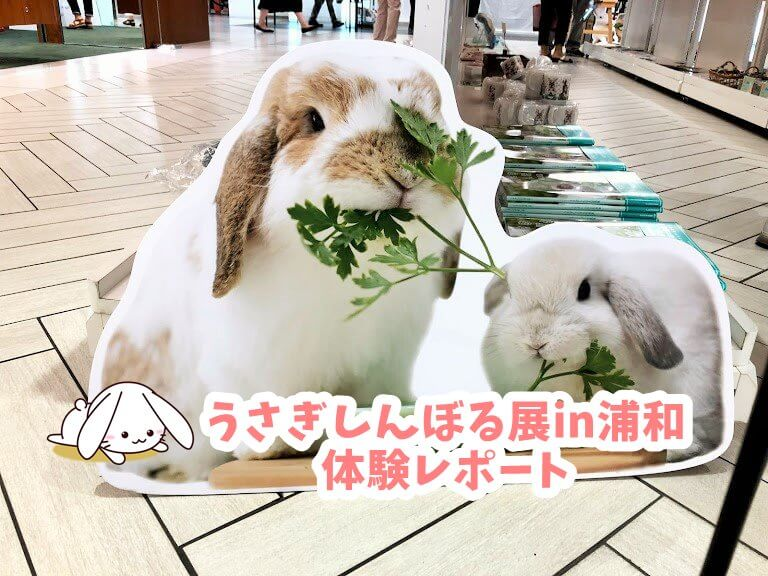 うさぎしんぼる展in浦和体験レポート