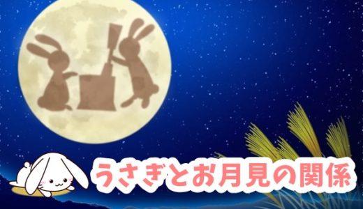 うさぎとお月見の関係