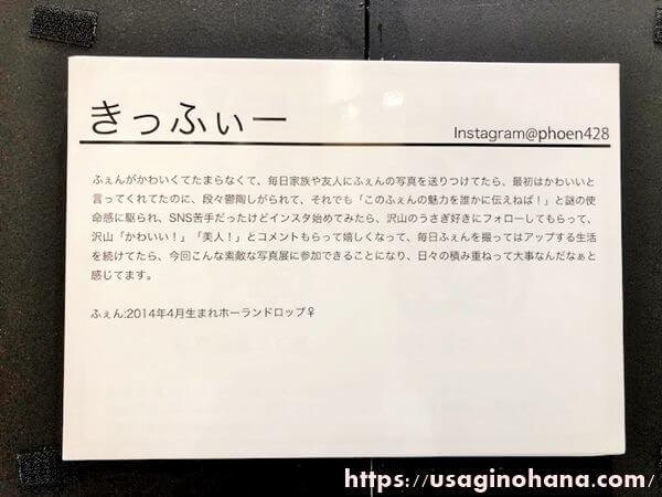 うさぎしんぼる展in浦和/きっふぃー
