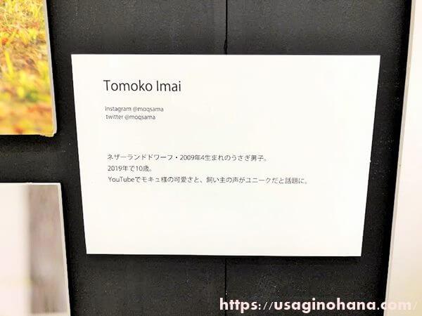 うさぎしんぼる展in浦和/Tomoko Imai
