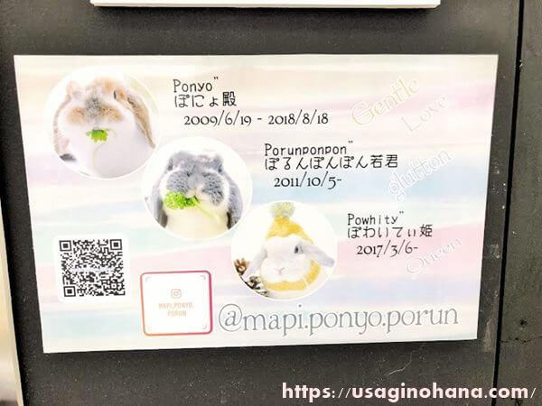 うさぎしんぼる展in浦和/mapi.ponyo.porun