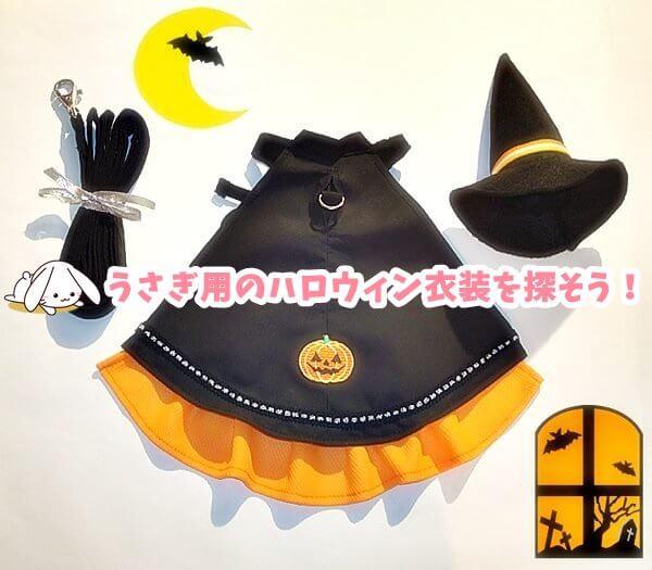 うさぎ用のハロウィン衣装を探そう!