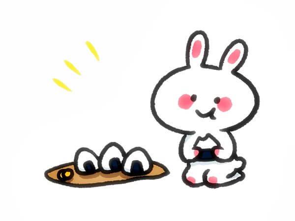 うさぎの食べ物~主食~