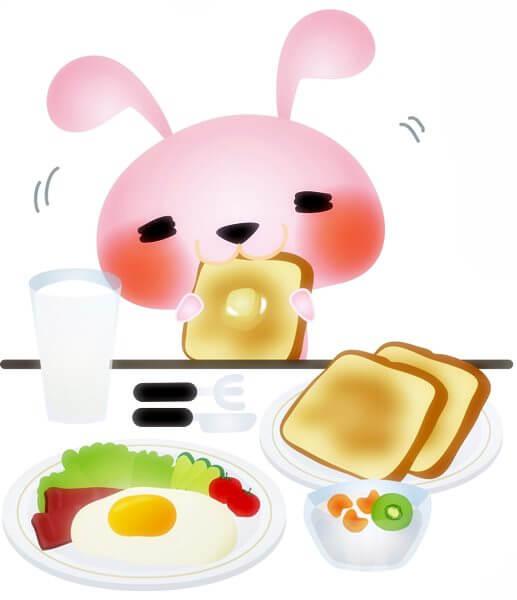 うさぎの食べ物~副食~