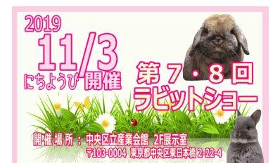 うさぎの室内うさんぽ会が東京の東日本橋で開催!