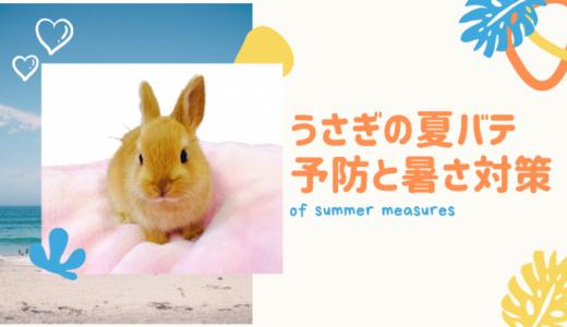 うさぎの夏バテ予防と暑さ対策
