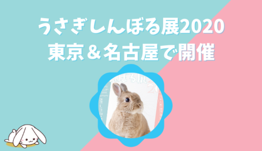 うさぎしんぼる展2020のグッズは?東京&名古屋の開催情報まとめ