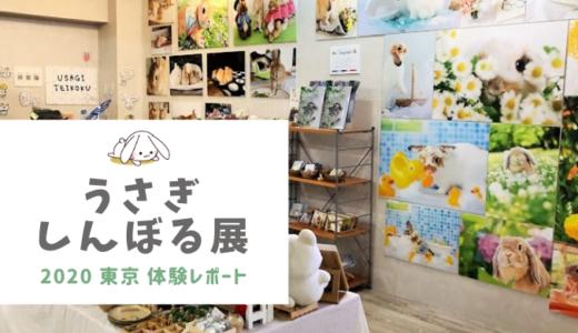 うさぎしんぼる展2020東京体験レポート!展示会&うさぎグッズの口コミと感想