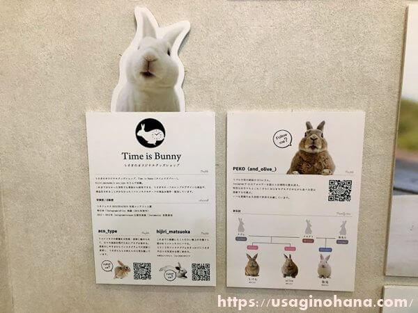 Time is Bunny&PEKO