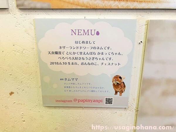 NEMU (ネム&ネムママ)