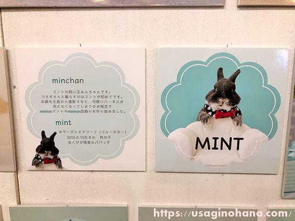 minchan&mint