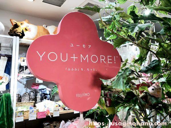 YOU+MORE!(ユーモア)について