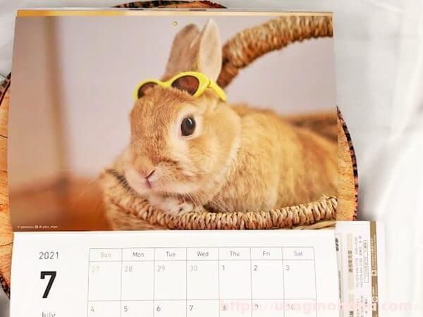 うさぎのきもち 2021年 スペシャルカレンダー