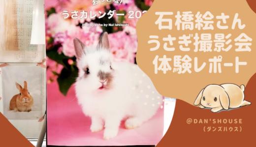 うさぎ専門店DAN'SHOUSE(ダンズハウス)石橋絵さん撮影会体験レポート