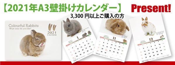 うさぎのしっぽの2021年A3壁掛けカレンダー
