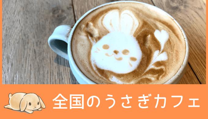 全国のうさぎカフェ